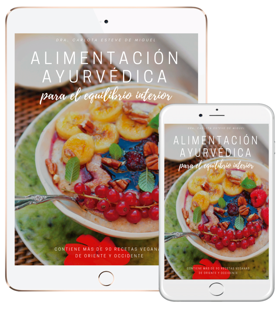 ebook-cocina-ayurvedica-ipad-iphone-2