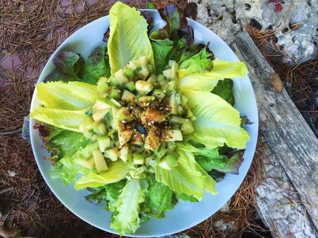 Reto Vegano Vegan Challenge ensalada y aliño crudivegana