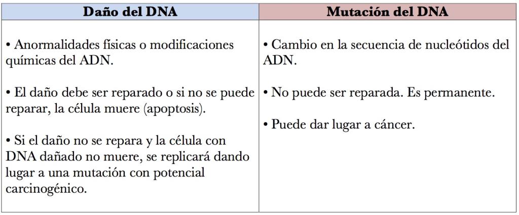 DNA daño